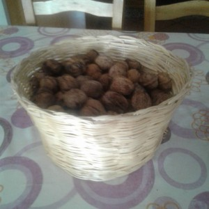 Nueces de Yeste.